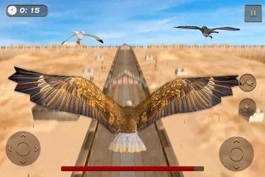 老鹰比赛模拟器